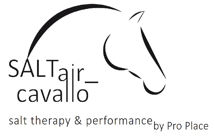 Partner Pferd 2018 SALTair_cavallo